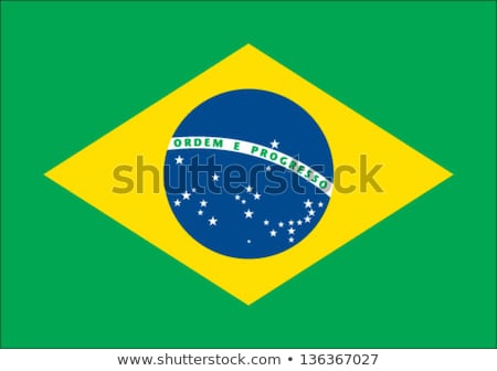 Brazilian flag  Stock photo © marinini
