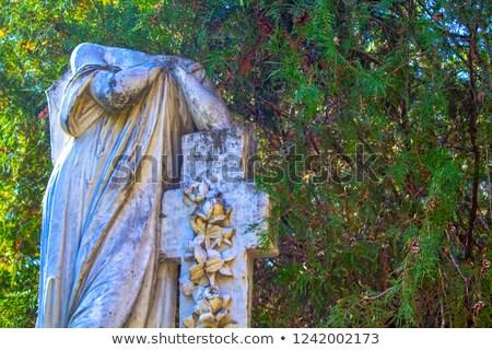 Intemperie christian simbolo cross campagna alberi Foto d'archivio © hraska
