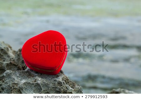 Alliances boîte Rock océan mariage amour Photo stock © phila54
