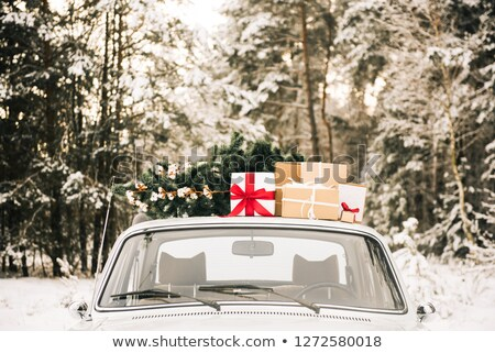 Gyönyörű játék fából készült ajándék doboz karácsony Stock fotó © tannjuska