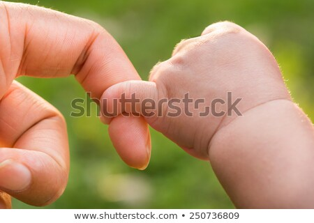 Baby hand gently holding adult's finger Stock photo © REDPIXEL