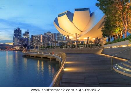 Museo noche Singapur centro de la ciudad vista marina Foto stock © joyr