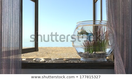 Foto stock: Playa · mar · ventana · peces · acuario · madera