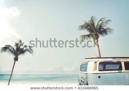 vintage · zand · tropische · palmbomen · hemel - stockfoto © hofmeester