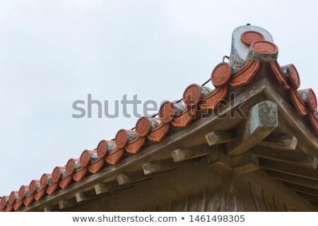 estuco · techo · castillo · edificio · vintage · historia - foto stock © shihina