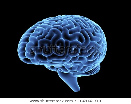 Mri imagen cerebro negro médicos medicina Foto stock © HighwayStarz