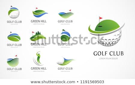 Golf conception de logo club icône golfeur homme Photo stock © twindesigner