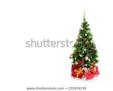 Noel hediye kutuları yaprak dökmeyen ağaçlar yeşil Stok fotoğraf © amok