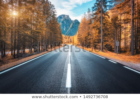 Landscape of high mountains in autumn Stock photo © pedrosala
