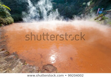 Steam and Red Mud in a Thermal Pool Stock photo © wildnerdpix
