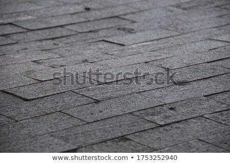 Brown Concrete Pavement Laid as Rectangles. Stock photo © tashatuvango