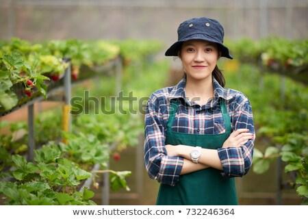 笑みを浮かべて きれいな女性 植木屋 立って 温室 ストックフォト © deandrobot