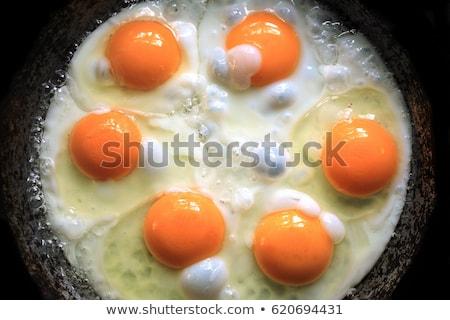 yumurta · güneşli · yan · yukarı · marul - stok fotoğraf © digifoodstock