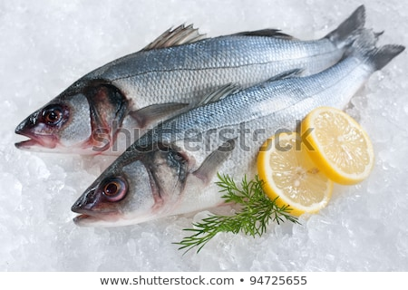 Sea bass with parsley stock photo © Antonio-S