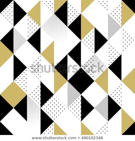 vektör · siyah · beyaz · geometrik · desen · model - stok fotoğraf © CreatorsClub