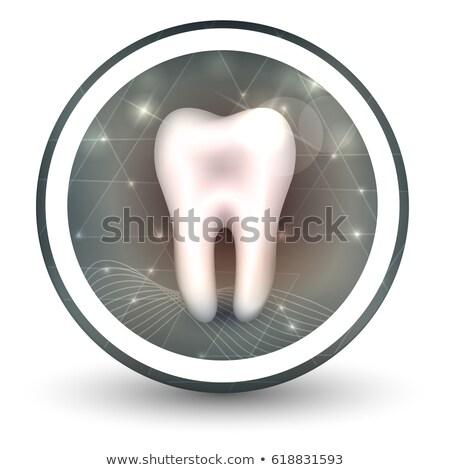 здорового зубов форма икона аннотация прозрачный Сток-фото © Tefi