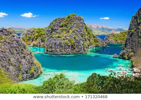 amazing turquoise waters in el nido philippines stock photo © tommyandone