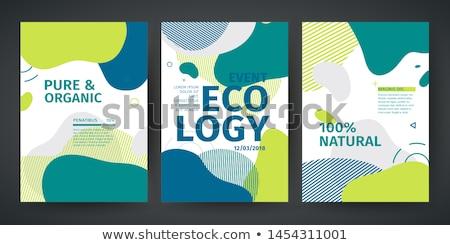 Falisty zielone linie wzór projektu tle Zdjęcia stock © SArts