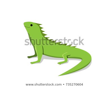 friendly green iguana in flat style vector stock photo © jiaking1
