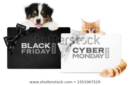 cyber monday sale silver ribbon gift bow design stock photo © krisdog