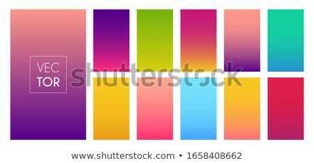 Web, bright colorful vivid theme Stock photo © JanPietruszka