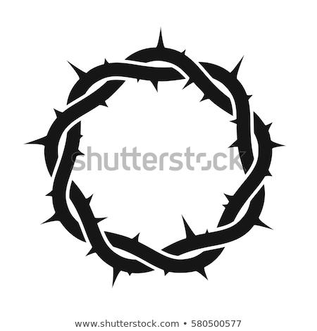 Korona izolált Jézus Krisztus húsvét fa Stock fotó © popaukropa