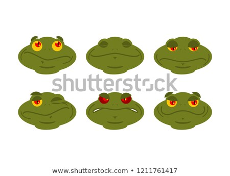 Frog emoji set. toad Avatar Good and evil amphibious. Sleeps and Stock photo © popaukropa