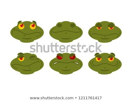 Béka szett varangy avatar jó gonosz Stock fotó © popaukropa
