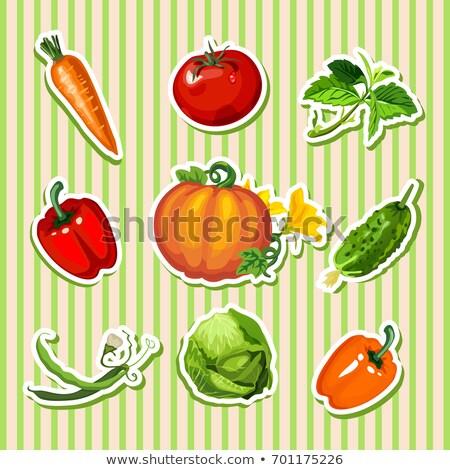 サンプル デザイン プラカード かわいい 野菜 ストックフォト © Lady-Luck