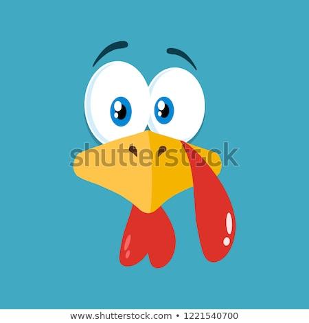 Acción de gracias Turquía aves cara azul Foto stock © hittoon