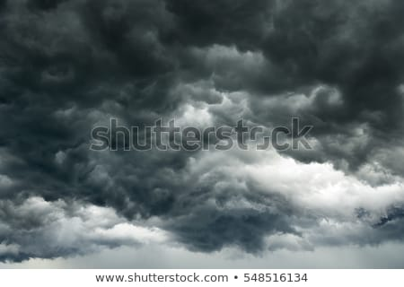 Gray sky with heavy rain and thunder Stock photo © colematt