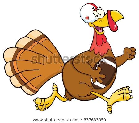 Piłka nożna Turcja ptaków uruchomiony dziękczynienie Zdjęcia stock © hittoon