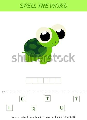Yazım kelime oyun kaplumbağa örnek okul Stok fotoğraf © colematt