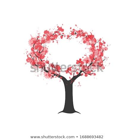 Sakura Çin çiçek ağaç mürekkep vektör Stok fotoğraf © pikepicture