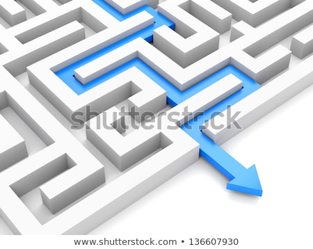 blue success in labyrinth Stock photo © marinini