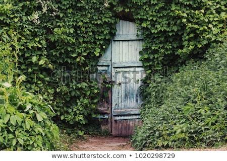 geheime · tuin · poort · bomen · park · bos - stockfoto © bobkeenan