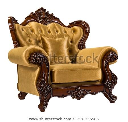 Barocco poltrona antichi damasco sedia ovale Foto d'archivio © ElaK