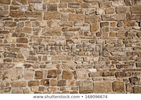 石の壁 フィールド 草 ストックフォト © dsmsoft
