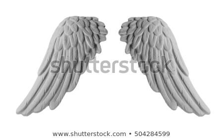 Winged Cherub Statue Stock photo © Kacpura