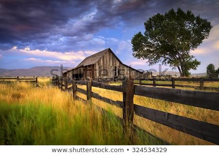 Rancho edad granero no hierba carretera Foto stock © tomoliveira