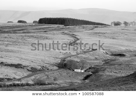 Narrow twisting road over the Mynydd Epynt hills in Wales UK. Stock photo © latent