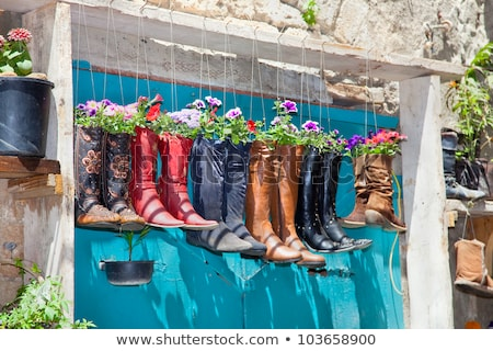 Original flower pots with flowers on the old window Stock photo © Julietphotography