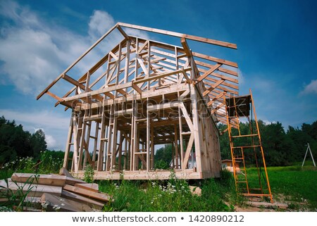 Woodworker erecting frame Stock photo © photography33
