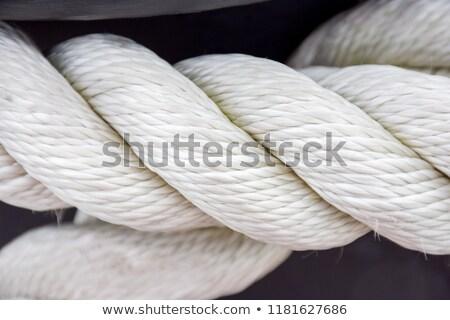 kötél · csomó · izolált · fehér · textúra · tenger - stock fotó © ozaiachin