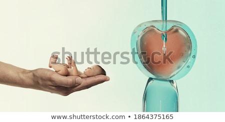sperma · természetes · orvosi · termékenység · emberi · rózsaszín - stock fotó © rastudio