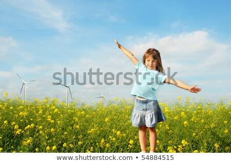 gün · batımı · rüzgâr · oturmak · modern · sanayi - stok fotoğraf © forgiss