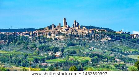 Piedra torre medieval ciudad Toscana Italia Foto stock © billperry