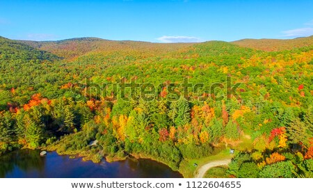 Aerial view of fall foliage and a covered bridge stock photo © DonLand