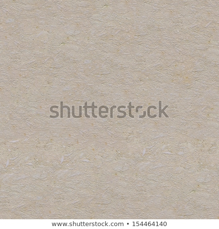 Seamless Tileable Texture of  Limestone Slab. Stock photo © tashatuvango