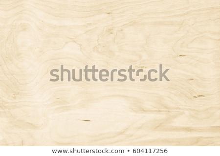 Plywood Stock photo © hanusst